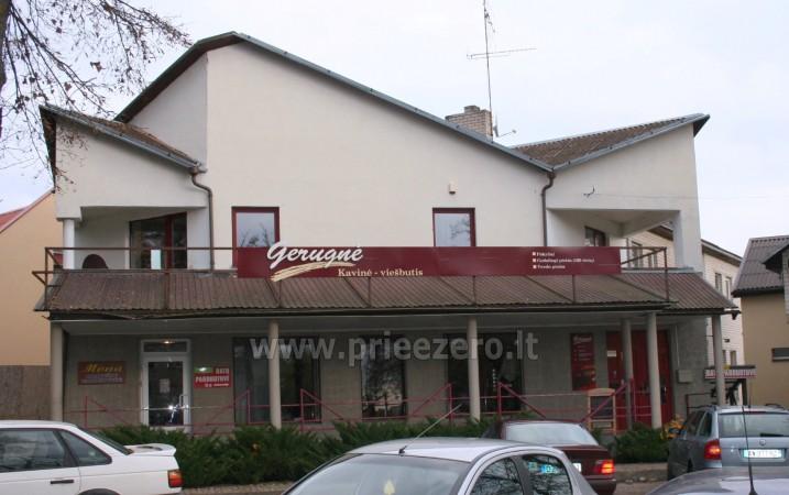 Гостиница в Молетай Gerugnė - 1