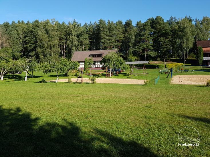 Homestead in Lazdijai region at the lake Trikojis Bertašiūnų Vienkiemis - 2