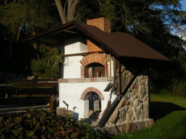 Homestead in Lazdijai region at the lake Trikojis Bertašiūnų Vienkiemis - 9