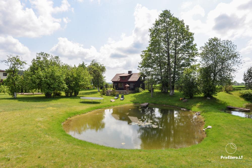 Relaxation in a homestead with sauna in Varena region, in Lithuania - 25