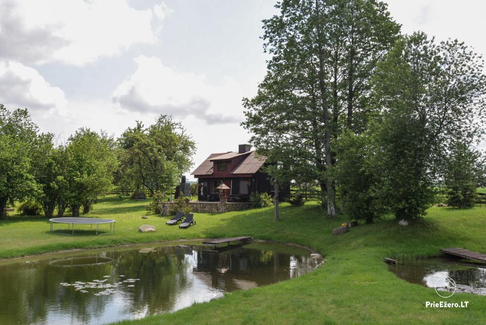 Relaxation in a homestead with sauna in Varena region, in Lithuania - 8