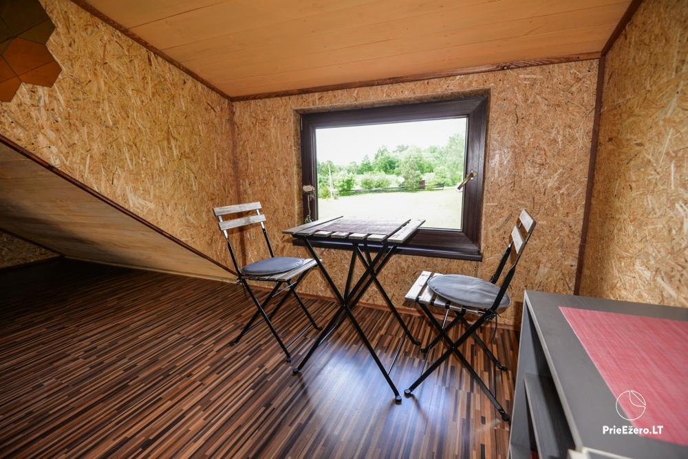 Relaxation in a homestead with sauna in Varena region, in Lithuania - 16