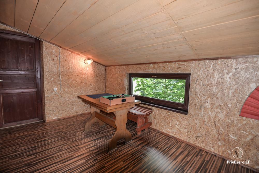Relaxation in a homestead with sauna in Varena region, in Lithuania - 24