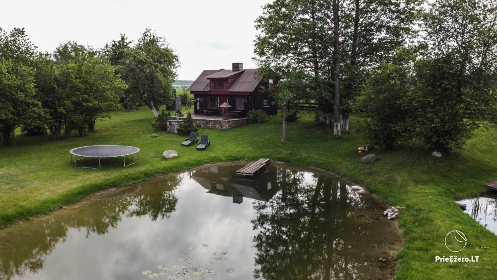 Relaxation in a homestead with sauna in Varena region, in Lithuania - 11