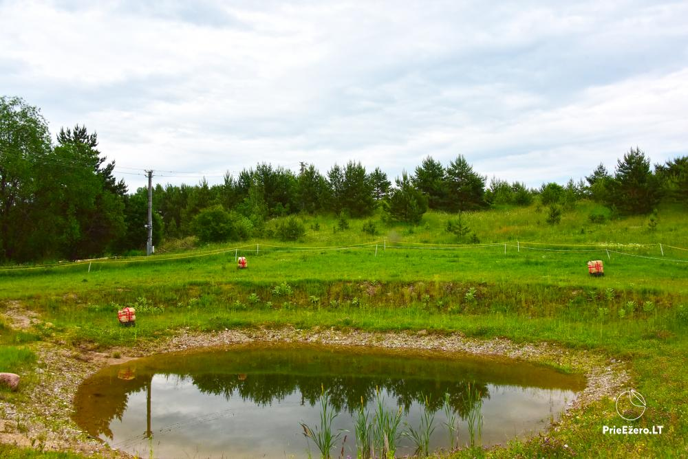 Homestead near the lake, 25km from Vilnius - 8