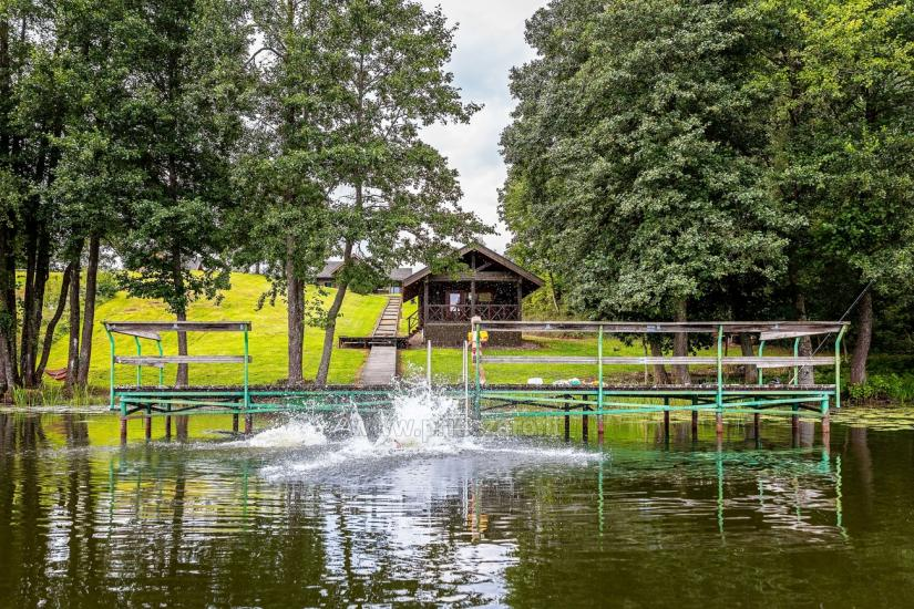 Holland Park in Moletai district – holiday cottages and houses on the lakeshore for families and friends - 30