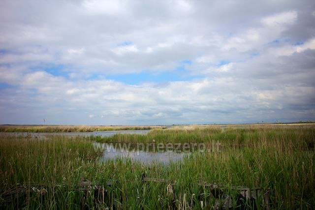 Holiday in Pape, Latvia. Apartments for rent in homestead at the sea Jekaupi - 24