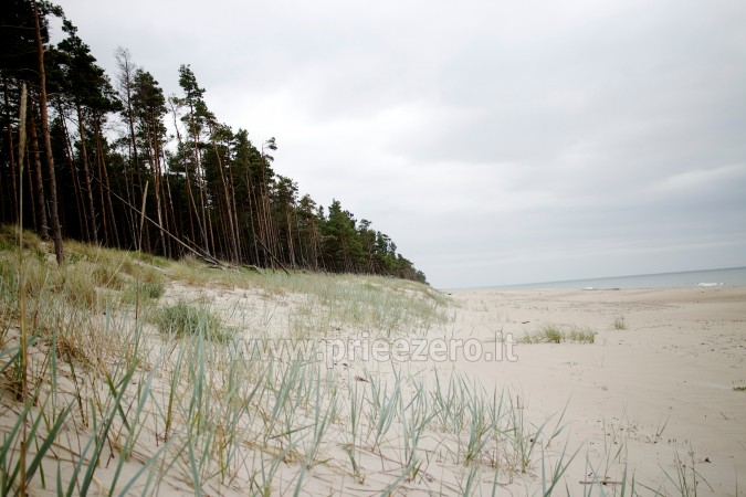 Holiday in Pape, Latvia. Apartments for rent in homestead at the sea Jekaupi - 27