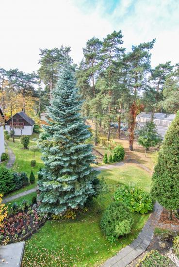 One room flat for rent in calm place, in Druskininkai - 8