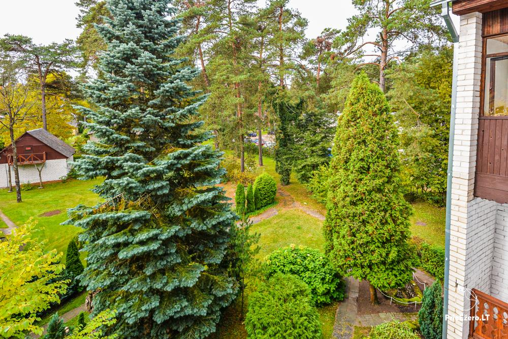 One room flat for rent in calm place, in Druskininkai - 19
