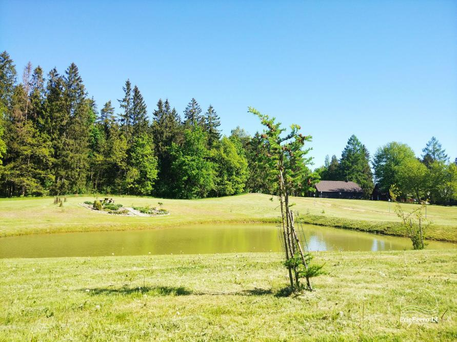 Banquet hall, sauna and holiday houses for rent in Plungė district in a homestead Stream of calmness - 8