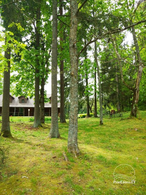 Banquet hall, sauna and holiday houses for rent in Plungė district in a homestead Stream of calmness - 5