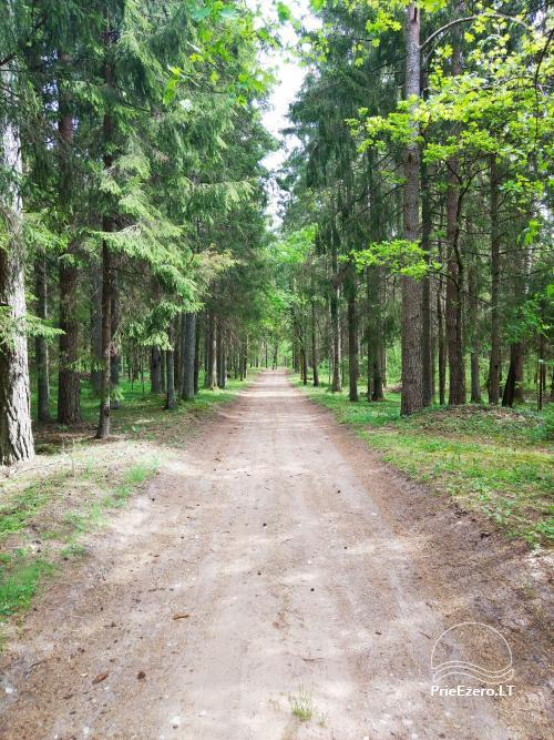 Banquet hall, sauna and holiday houses for rent in Plungė district in a homestead Stream of calmness - 4