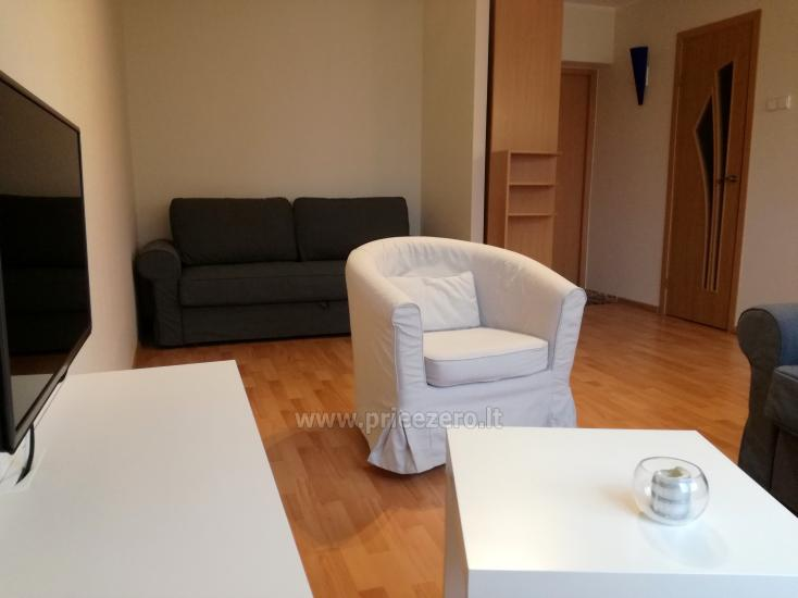 Flat for rent in Druskininkai near the lake Druskonis - 2