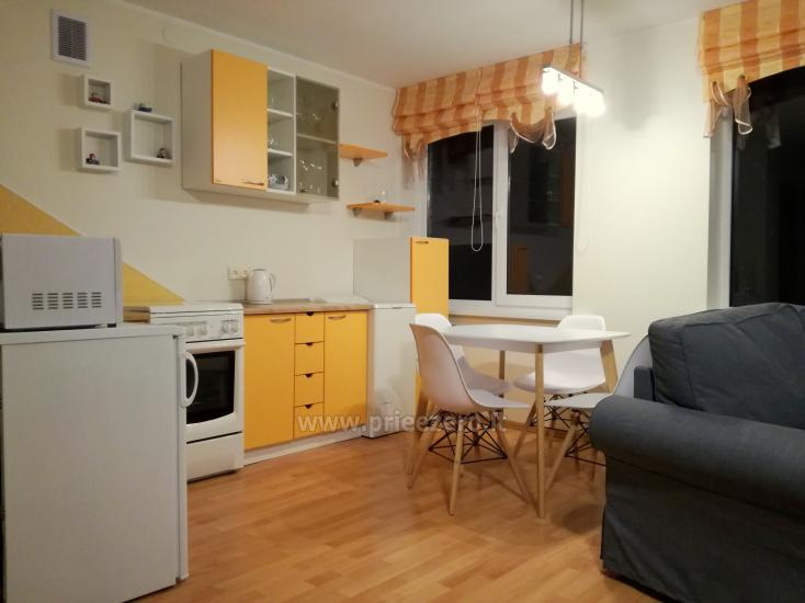 Flat for rent in Druskininkai near the lake Druskonis - 1