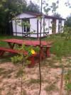 Holiday cottages, camping in Ventspils district Vinkalni - 5