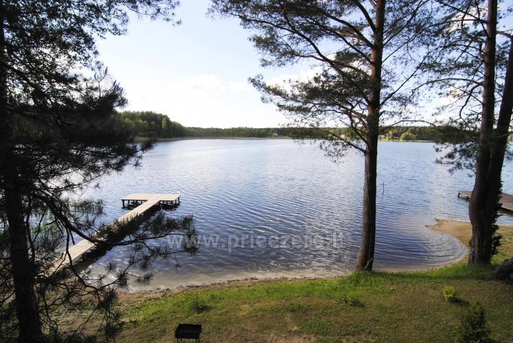 Homestead by the lake Giedavardis - 5