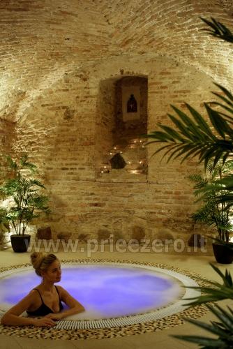 Banket hall, Sauna complex, Jacuzzi in Vilnius  Barboros svajos - 2