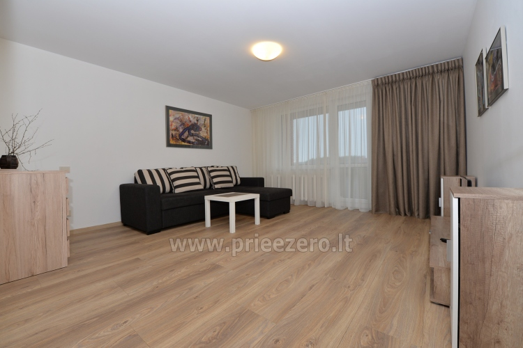 2 bedroom apartment in the central city street in Druskininkai - 2