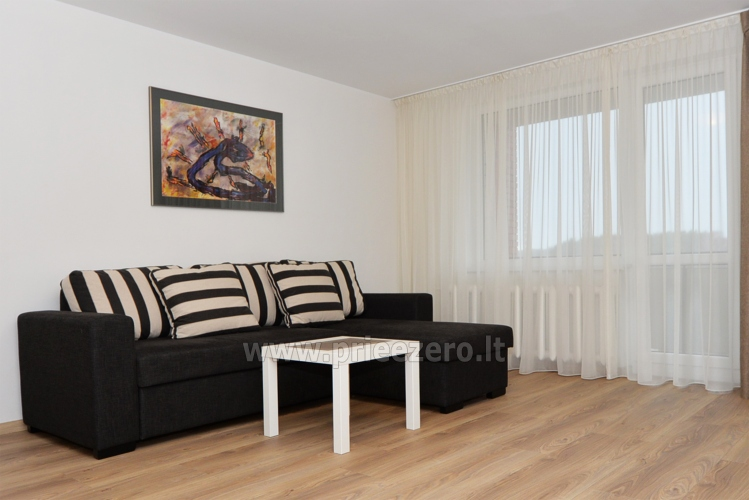 2 bedroom apartment in the central city street in Druskininkai - 3