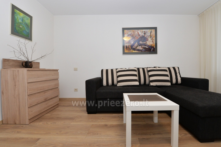 2 bedroom apartment in the central city street in Druskininkai - 4