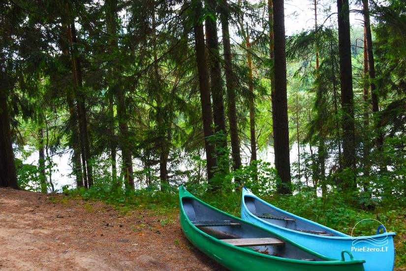 Ilona's homestead on the lake shore - 16