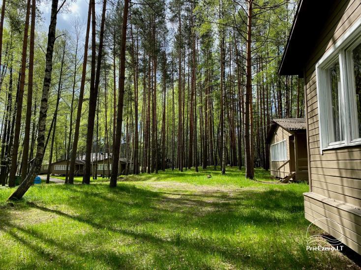 """Resort at Lake Siesartis - """"Oak"""" - 5"""