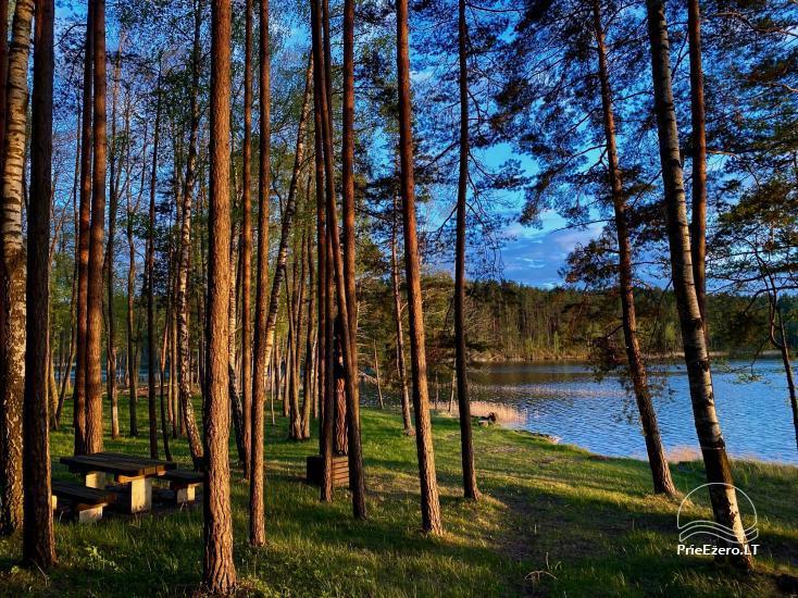 """Resort at Lake Siesartis - """"Oak"""" - 8"""