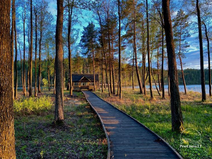 """Resort at Lake Siesartis - """"Oak"""" - 9"""