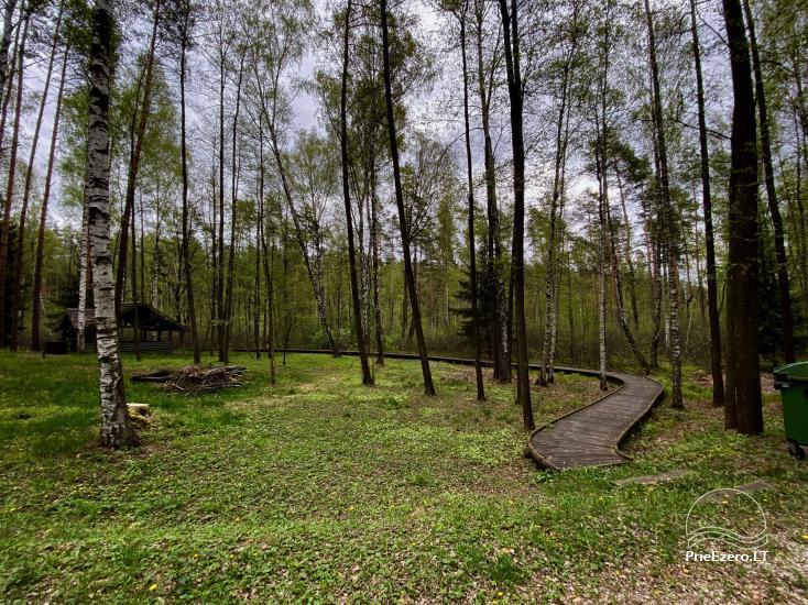 """Resort at Lake Siesartis - """"Oak"""" - 12"""
