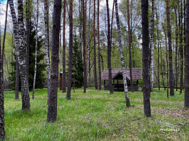 """Resort at Lake Siesartis - """"Oak"""" - 14"""