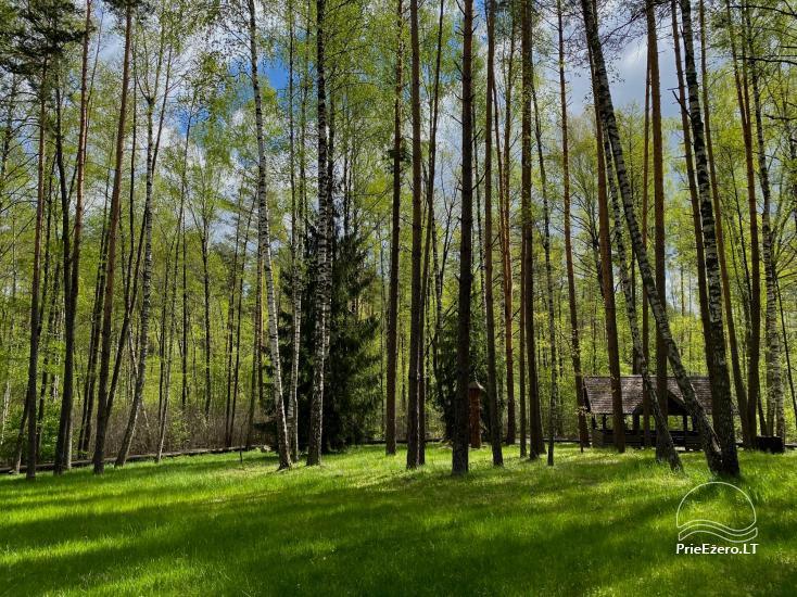 """Resort at Lake Siesartis - """"Oak"""" - 15"""