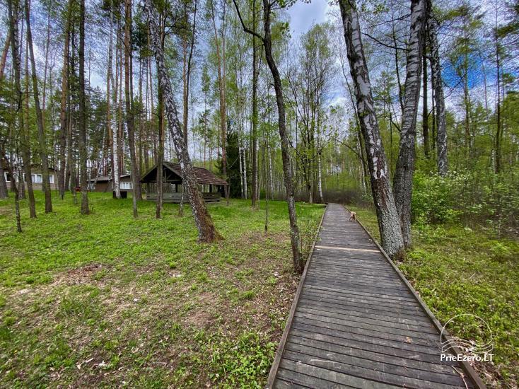 """Resort at Lake Siesartis - """"Oak"""" - 16"""