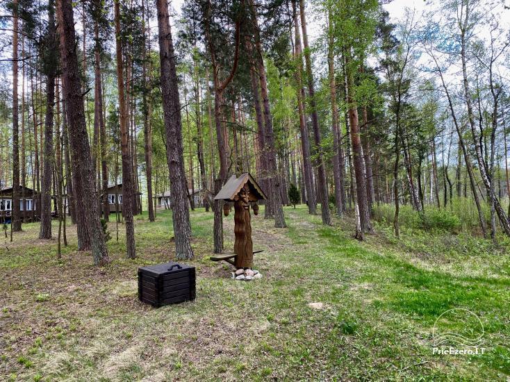 """Resort at Lake Siesartis - """"Oak"""" - 17"""