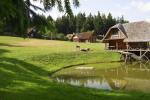 Homestead, holiday cottages at the lake Plateliai - 6