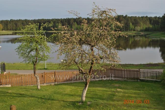Rooms for rent in Druskininkai - 7
