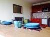 Gemütliche und gepflegte  Einzimmerwohnung-Studio im Zentrum von Druskininkai