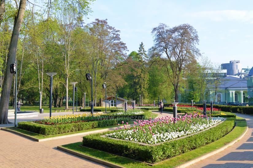 Druskininkai in spring