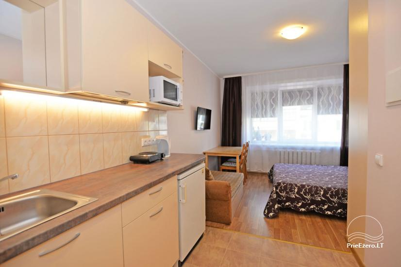 Cozy apartment in the center of Druskininkai - 6
