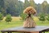 Villa in Skuodas district Gervių gūžta: banquet hall, sauna, bedrooms - 20