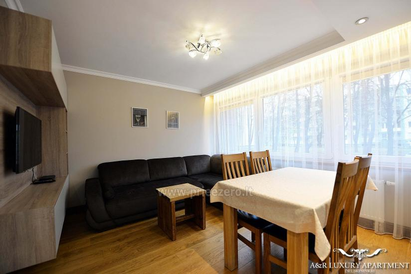 A&R Luxury apartment in Druskininkai, Lithuania - 4