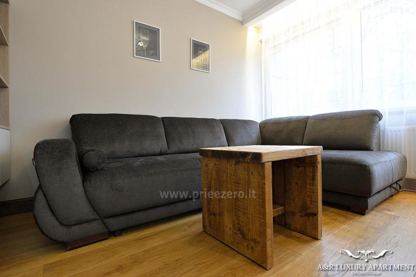 A&R Luxury apartment in Druskininkai, Lithuania - 5