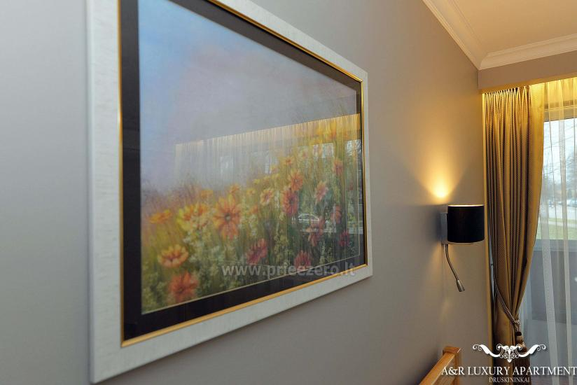 A&R Luxury apartment in Druskininkai, Lithuania - 21