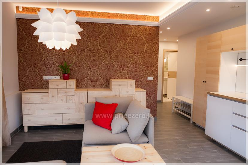 Отдых в Друскининкае - Апартаменты с кухнями  «Vila Nikolas» - 11
