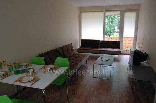 Vacation in Druskininkai - 2-room apartment for rent - 4