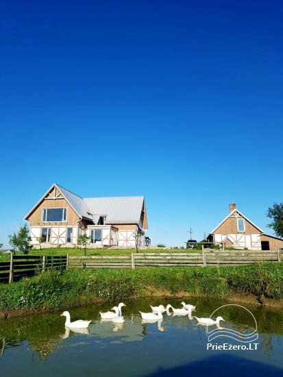 Provance style homestead in Vilnius district Pievų menė - 7