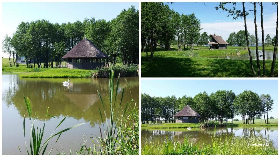 Homestead for feasts on the lake shore in Alytus district Atesys - 26