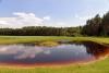 Сельская усадьба Vainiūnai в Лаздияйском регионе, Литва - 25