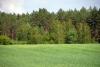 Сельская усадьба Vainiūnai в Лаздияйском регионе, Литва - 27