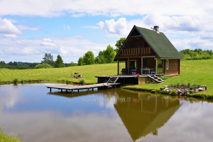 Усадьба Березовая роща в Игналинском районе на берегу водоема - 3